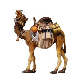 RA Camel with luggage
