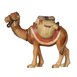 PE Camel with luggage